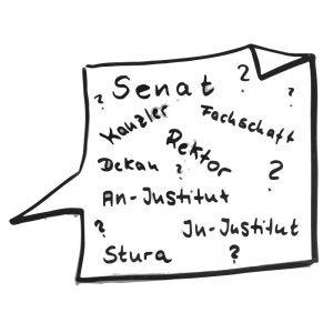 Fragen zum Senat, Kanzler, Rektorat, In-Institut, An-Institut, StuRa, Dekan